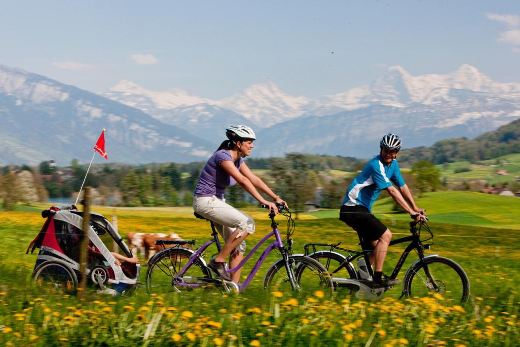 Gesetzliche Regelungen: Nur gut informiert aufs Elektro-Fahrrad