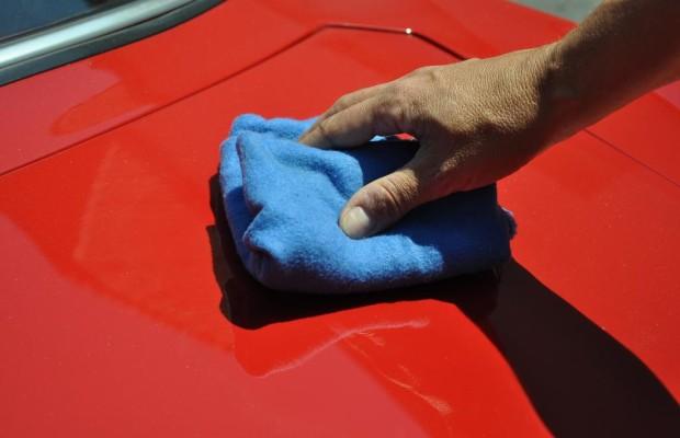 Autopflege im Sommer - Runter mit den Insekten