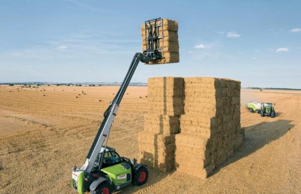 Fast ein Prozent Ackerfläche für Bioethanol