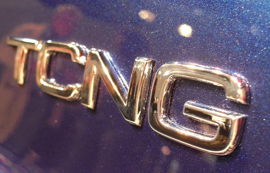 Die Abkürzung TCNG steht für Turbo und Compressed Natural Gas, also Erdgasantrieb.