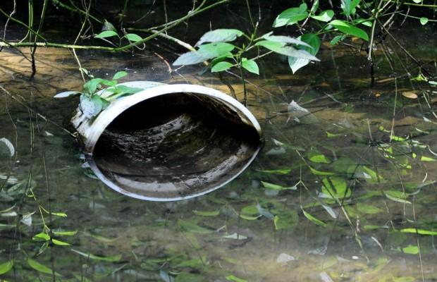 Autokonzerne mitverantwortlich für Umweltschäden in Schwellenländern
