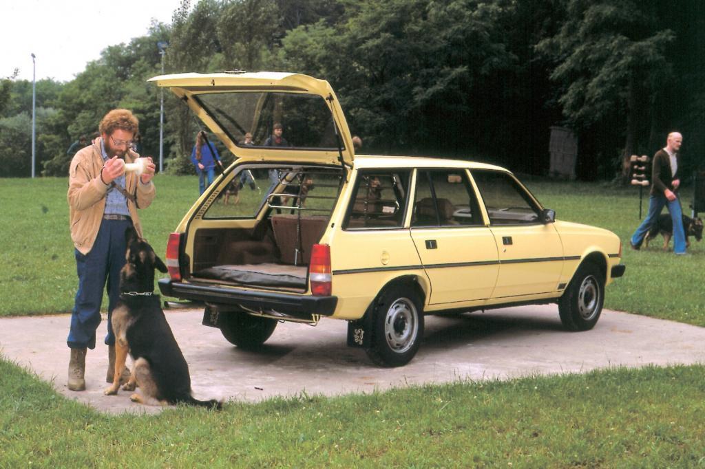Peugeot 305 Break ab 1980