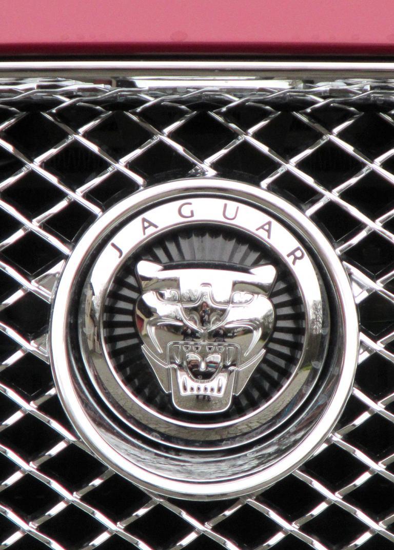 Jaguar XF Sportbrake: Das Markenlogo sitzt vorn im wabenförmigen Gitter-Kühlergrill.