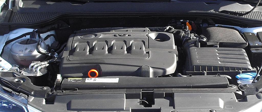 Seat León: Blick unter die Haube. Bis Frühjahr stehen neun Motoren zur Wahl.