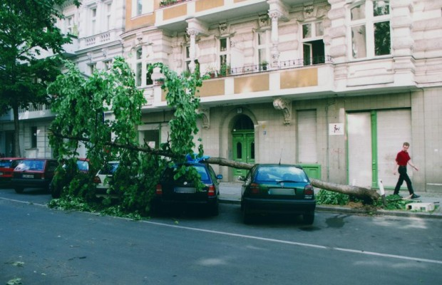 Versicherungsschäden - Sturm und Hagel machen´s teuer
