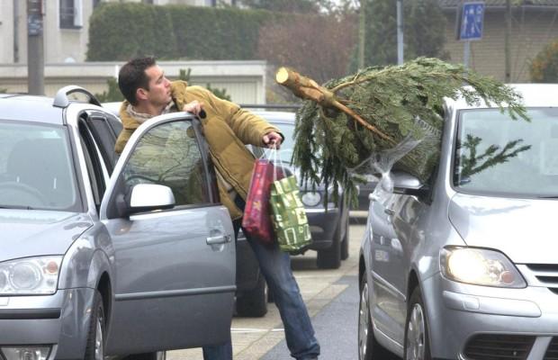 Weihnachtsbaum-Transport - Gut gesichert zum Fest