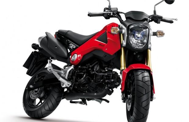 Honda MSX 125: Neues Leichtkraftrad kommt im Mai