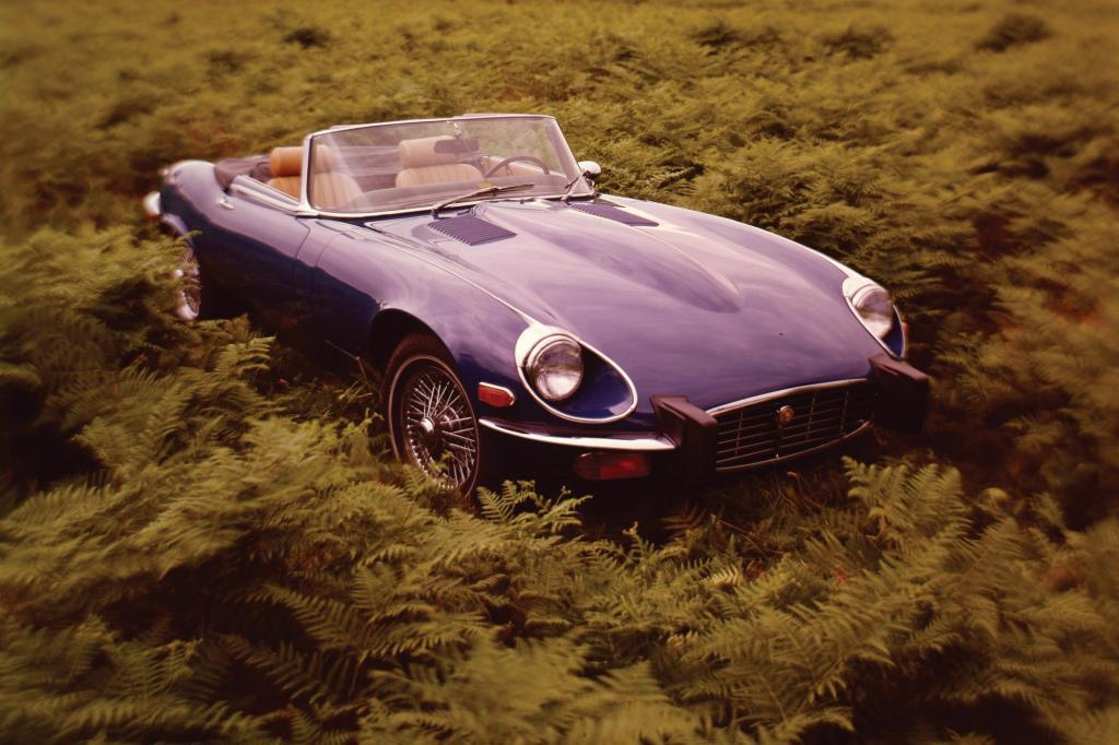 Platz 3: Jaguar E Type V12 Roadster
