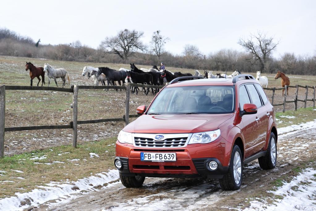Subaru Forester: Vom Allrad-Kombi zum SUV