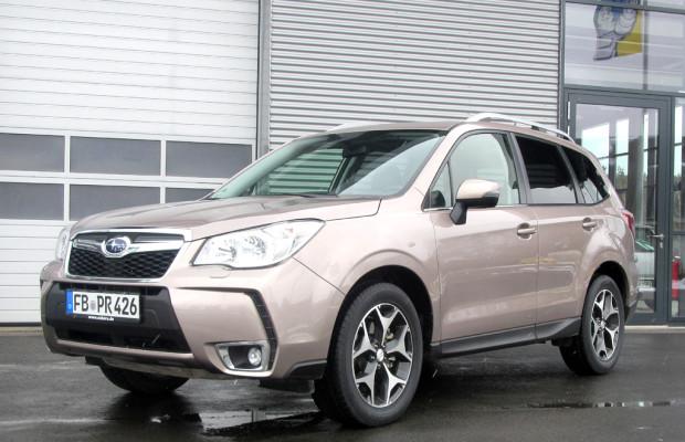 Wieder Turbobenziner: Subarus neuer Forester startet in zweiter März-Hälfte