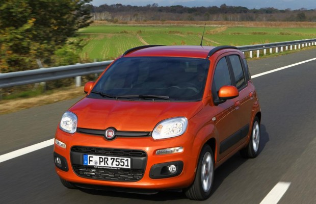 Der Fiat Panda als bäriger SUV