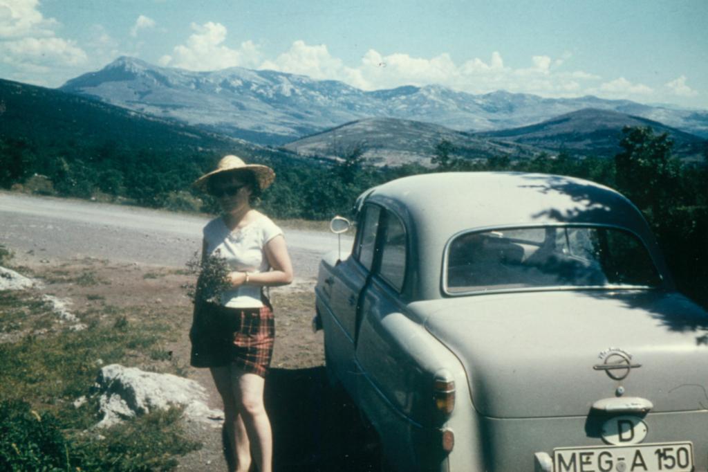 Opel Olympia Rekord ab 1953