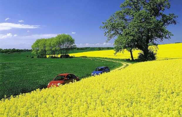 EU-Ausschuss: Kein Biosprit aus Nahrungsmitteln