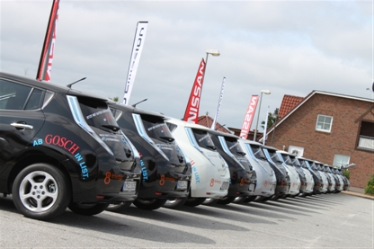 Jedes zweite Elektroauto ist ein Nissan Leaf