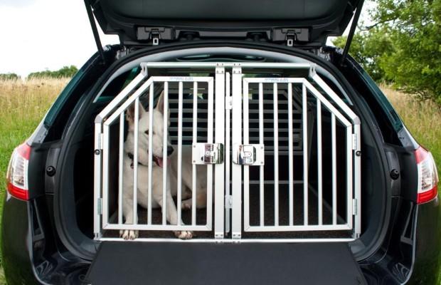 Hundehaltung im Pkw während der Arbeitszeit verboten