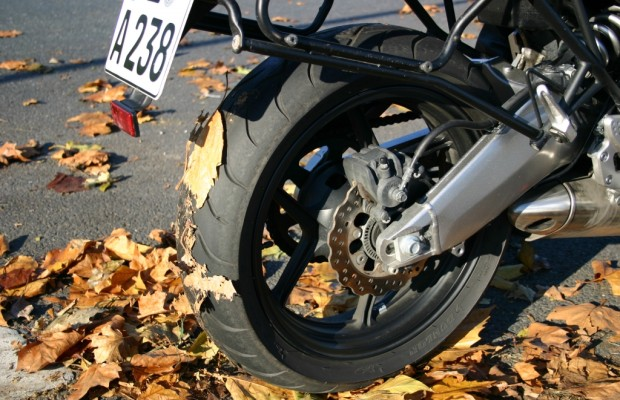 Ratgeber: Mit dem Motorrad durch den Herbst