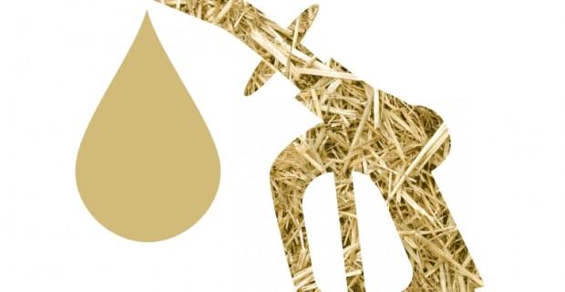 Stroh wird zu flüssigem Gold - Biokraftstoff ohne Reue © Clariant