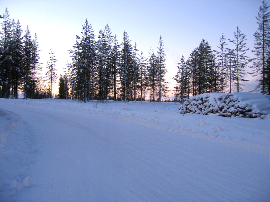 Winterreifen erhöhen die Sicherheit in der kalten Jahreszeit. Foto: Continental