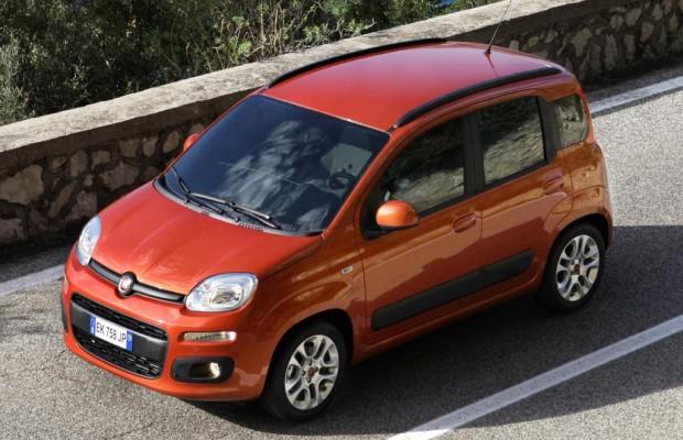 Fiat Panda - Basis-Bärchen zum Sonderpreis
