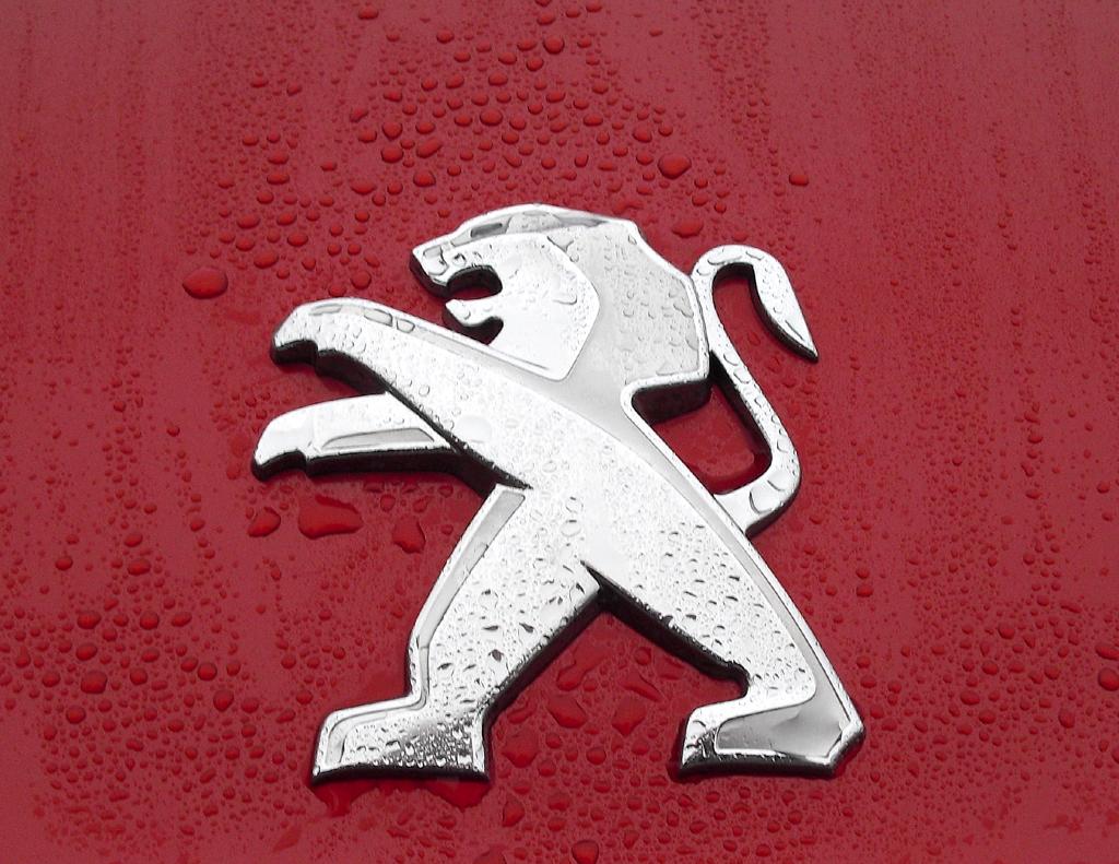 Peugeot RCZ R: Das Markenemblem, der Löwe, sitzt vorn über dem Kühlergrill.