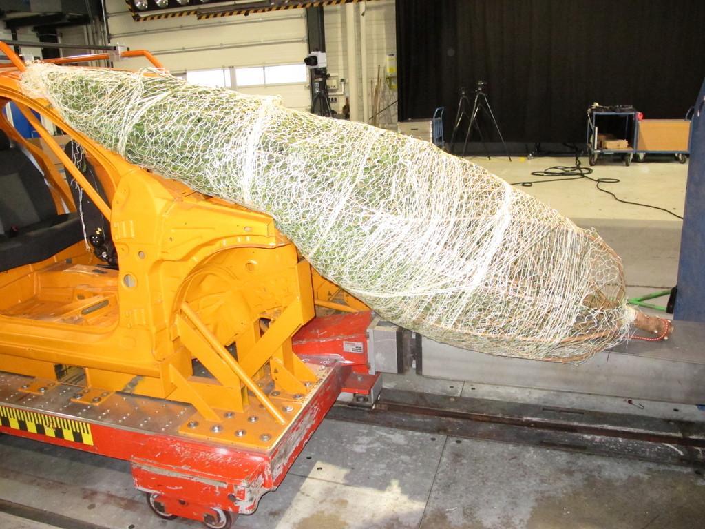 Ratgeber: So kommt der Weihnachtsbaum heil ans Ziel
