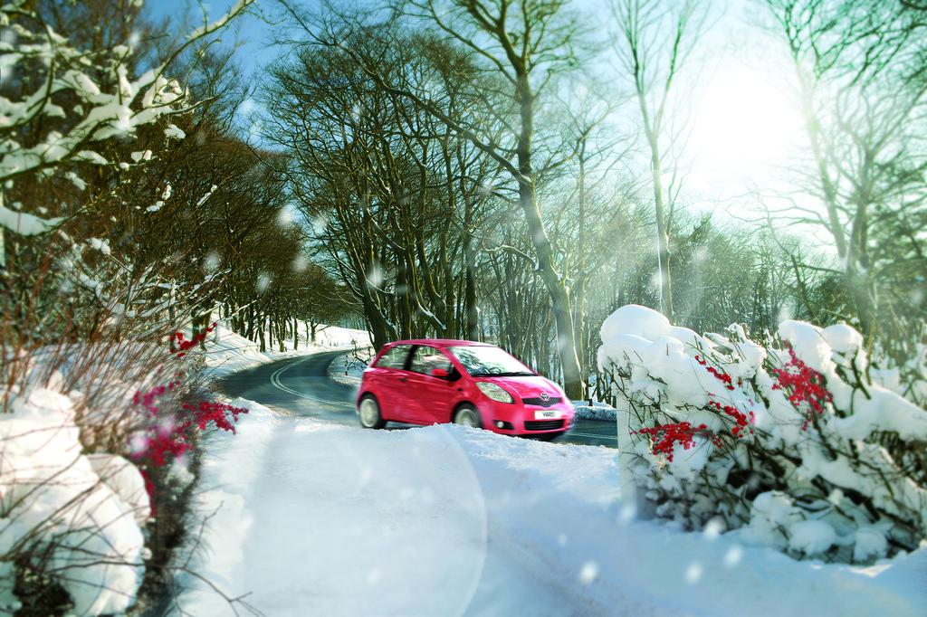 Toyota bietet Winter-Check für 9,90 Euro