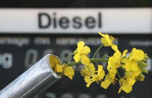 Deutscher Biodiesel boomt im Ausland