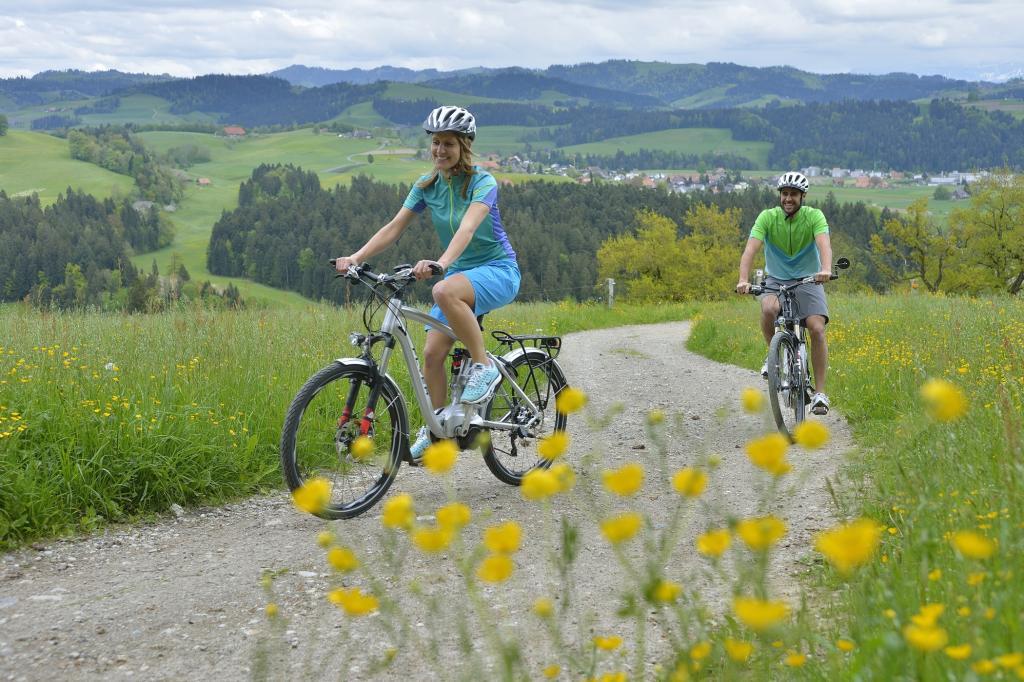 10 Fragen und Antworten zum Thema Elektrofahrrad - Was man über E-Bikes wissen muss