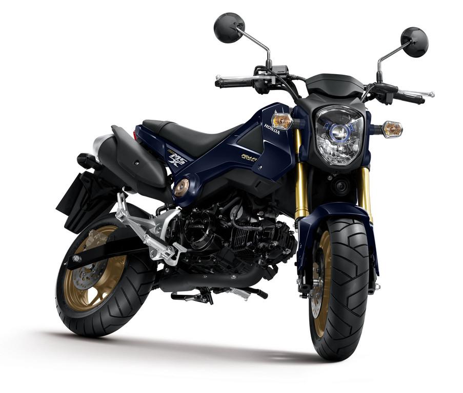 Schönheitspflege für die Honda MSX 125