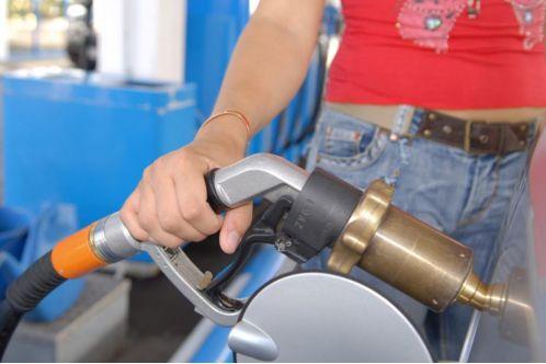 Diesel-Produktion aus Algen