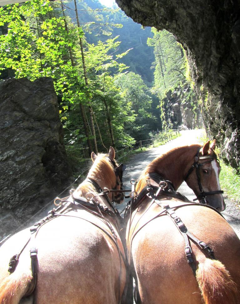 Eine Fahrt im Pferdewagen durch die Schlucht ist etwas Besonderes.
