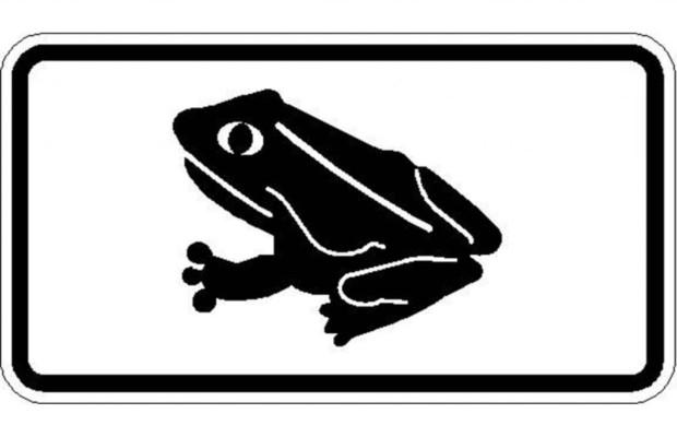 Krötenwanderung beginnt - Vorsicht, glitschige Amphibien