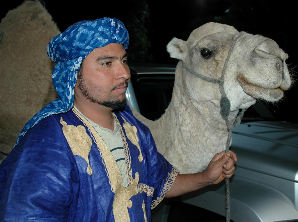 Abendliche Begegnung: Kamelführer und Kamel.