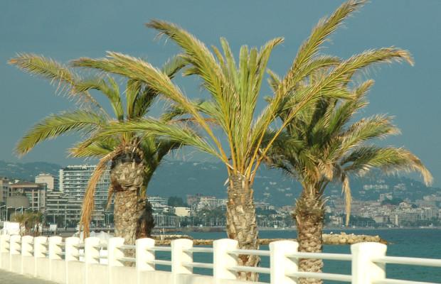 Cannes kann's: Die französisch Noble an der Cote d'Azur