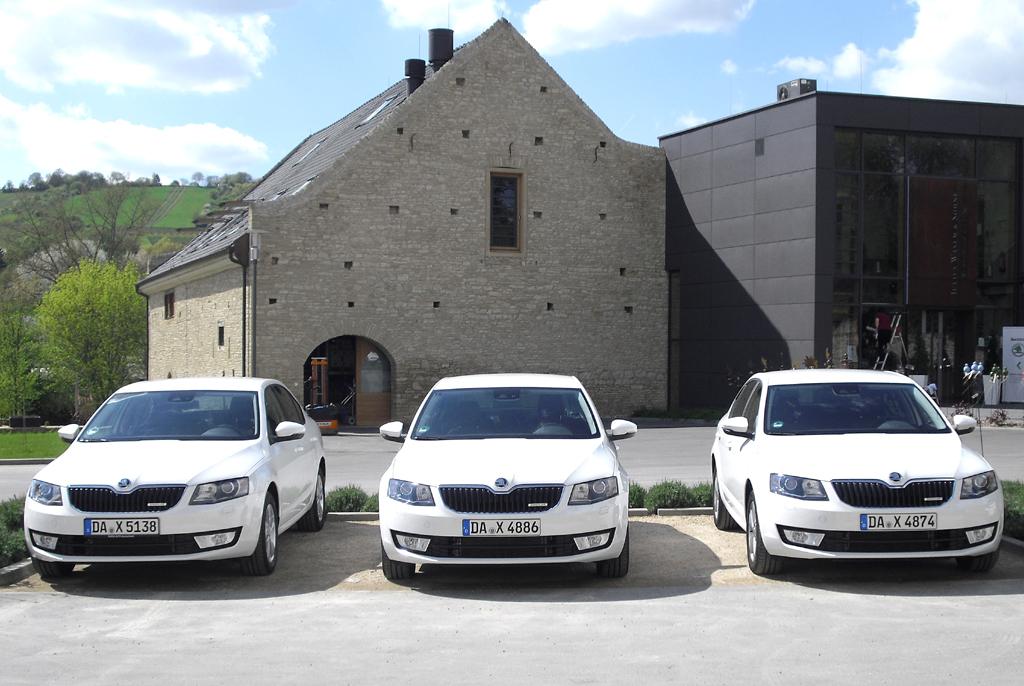 Octavia-Parade ganz in Weiß, hier die Limousinen.