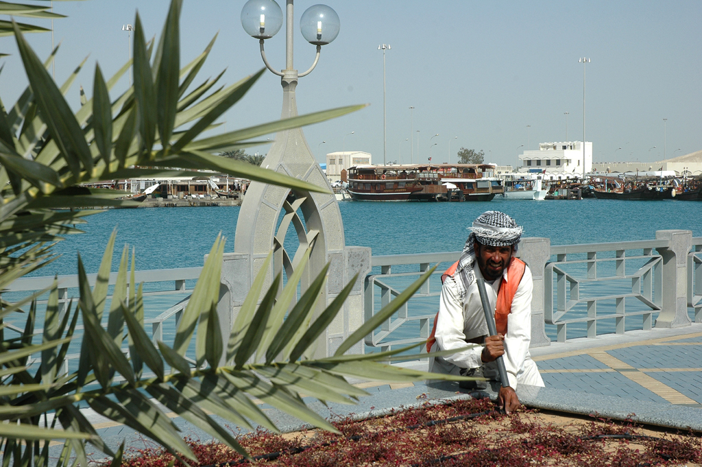Pflanzenpflege: Vor Dhau-Hafen in Abu Dhabi.