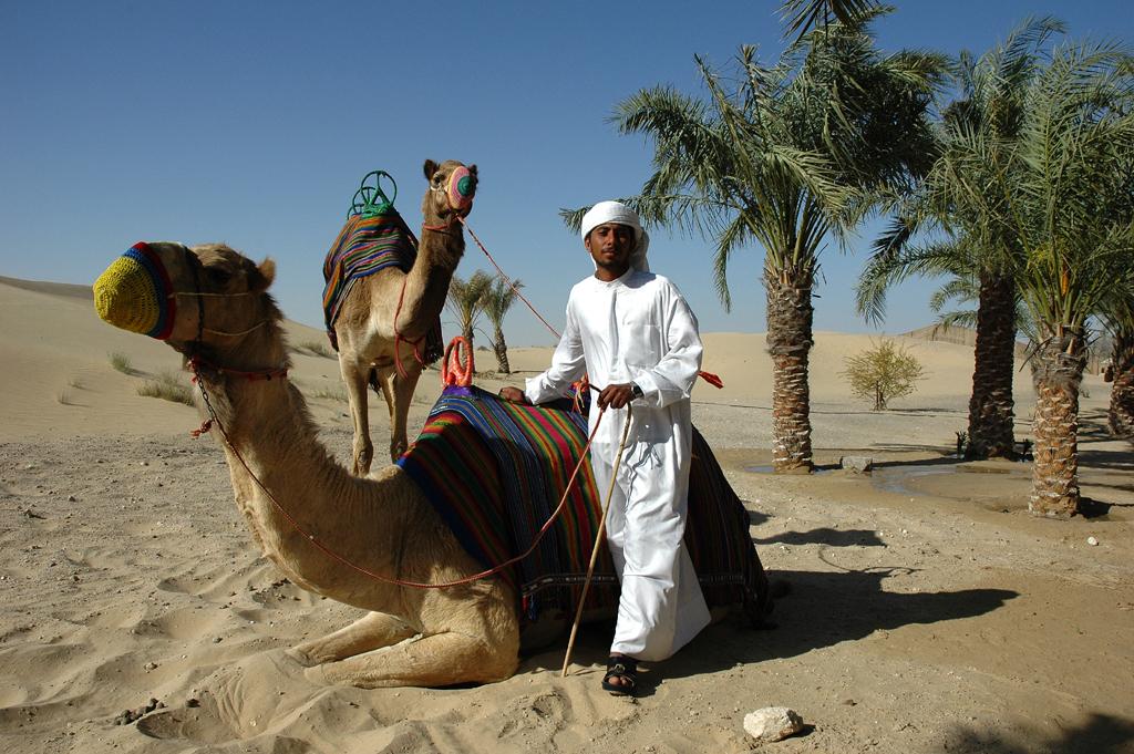 Tierrisch: Begegnung in der Wüste.