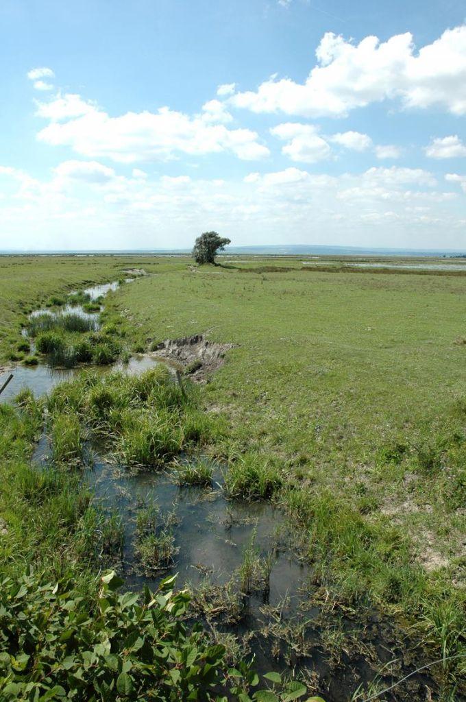Bei der Landschaft handelt es sich um einen noch intakten Naturraum.