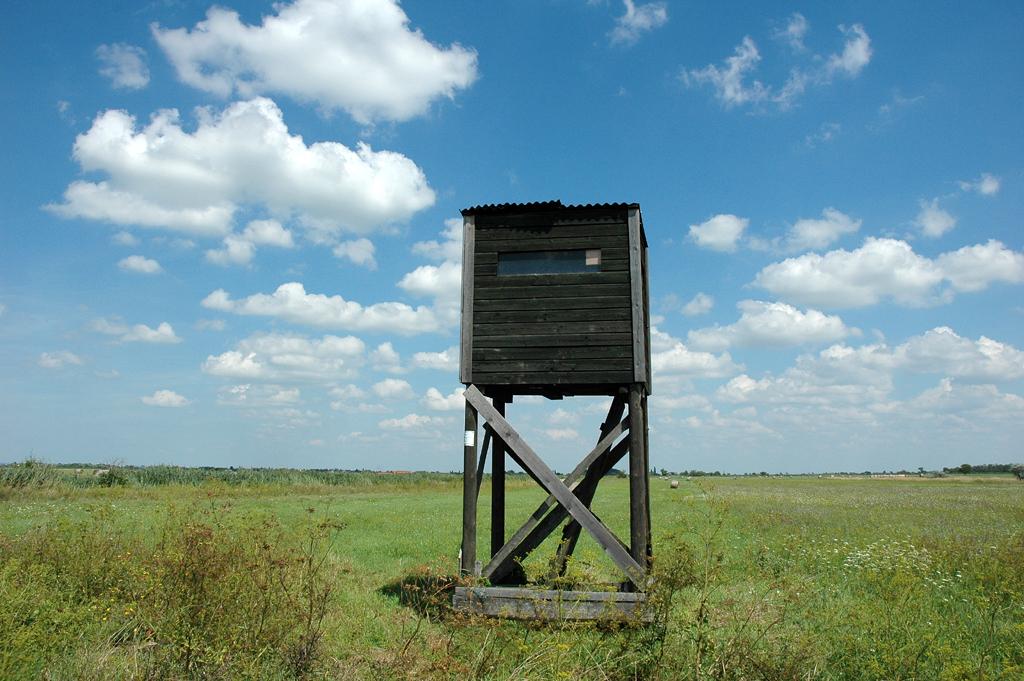 Hölzerner Beobachtungsturm am Rand des Neusiedler Sees.