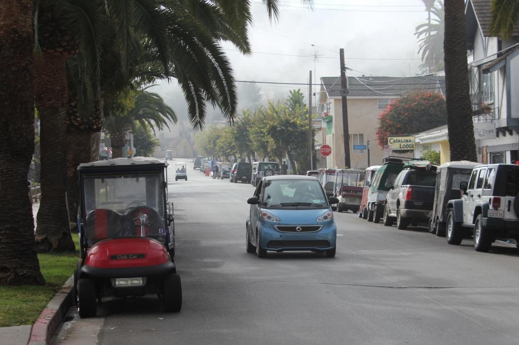 Nirgendwo in Kalifornien ist der Besitz eines Autos so stark reglementiert wir auf der Insel, die einst dem Kaugummi-Giganten Wrigleys gehörte und jetzt von einer Stiftung verwaltet wird