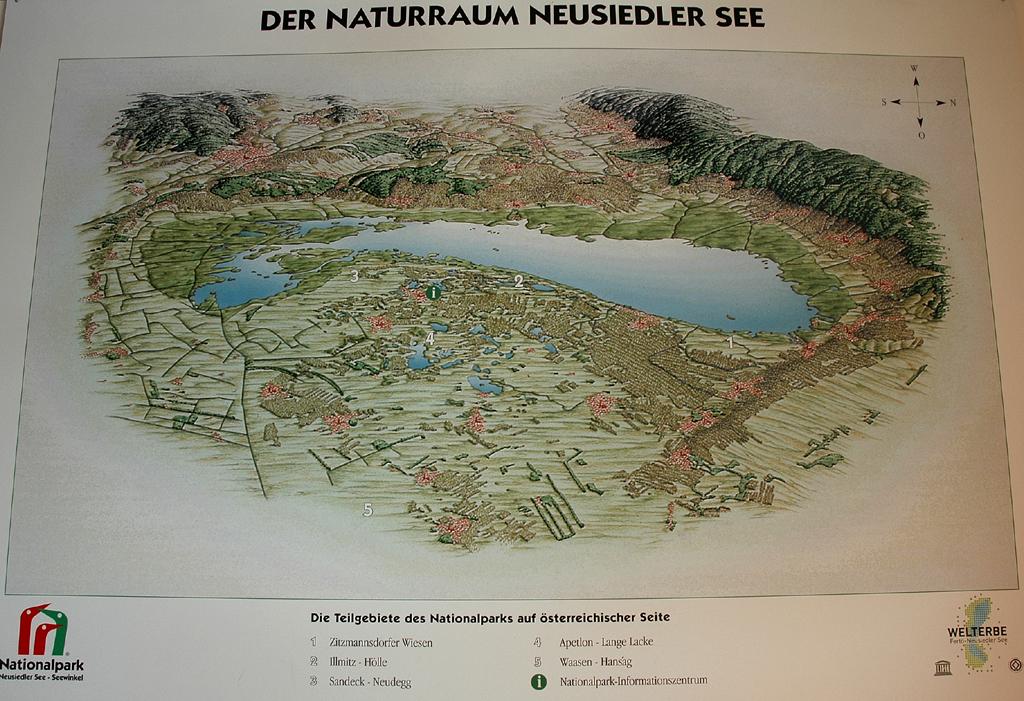 Zum Naturraum Neusiedler See gehören auf österreichischer Seite die Zitzmannsdorfer Wiesen, Illmitz/Hölle, Sandeck/Neudeck, Apetlon/Lange Lacke und Waasen/Hansag.