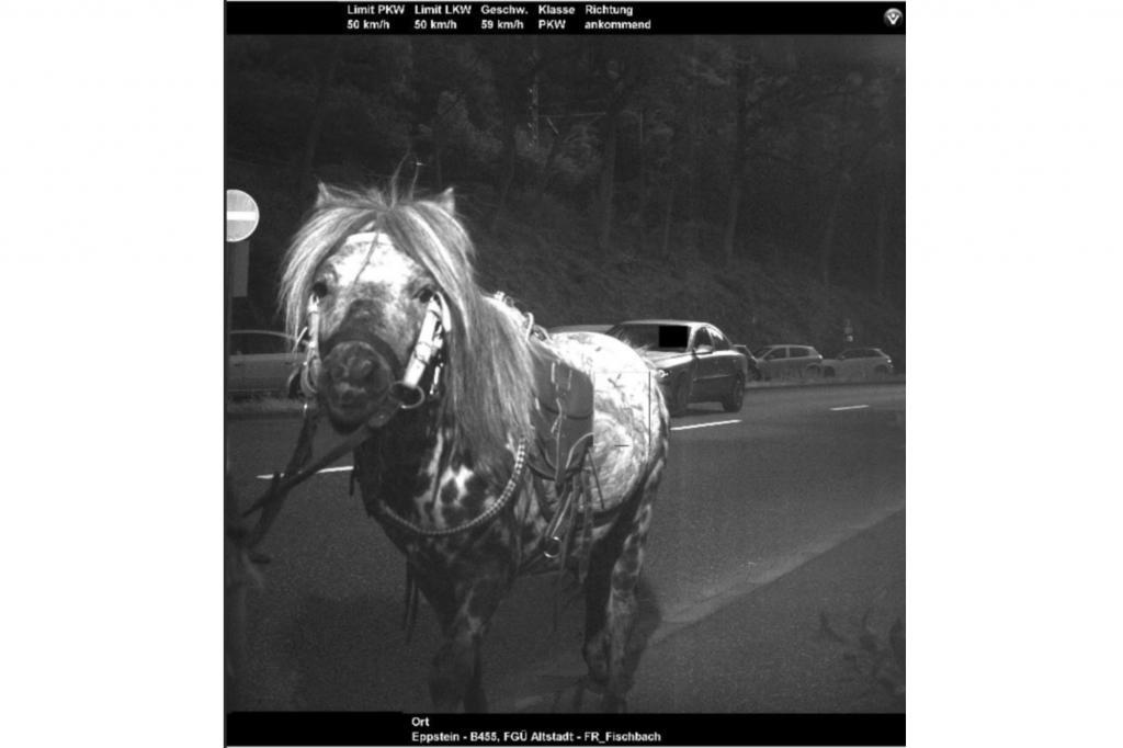 59 km/h zeigt das Blitzerfoto an, der verdeckte Schnellfahrer im Auto darf sich freuen