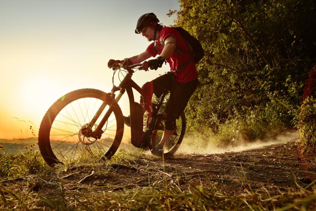 E-Bikes setzen sich immer mehr durch