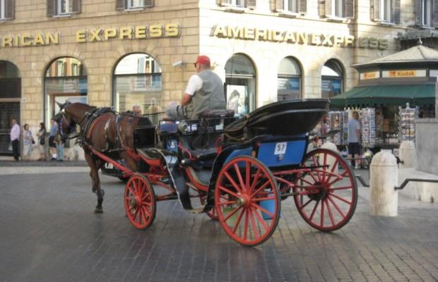 Keine Gnade für betrunkenen Pferdekutscher