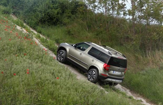 Recht: Vorfahrt auf Bundesstraßen - Vorsicht beim Verlassen von Feldwegen