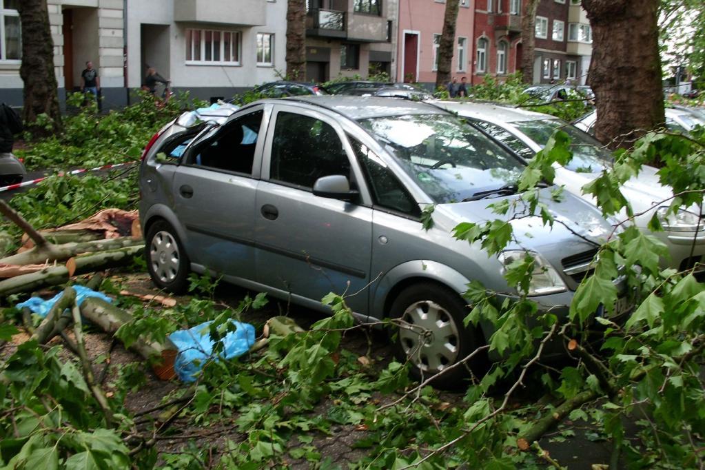 Sturm-Chaos: Der Albtraum der Autofahrer