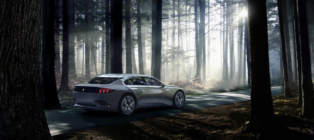 Paris 2014: Jetzt kommt uns der Peugeot Exalt in Grau