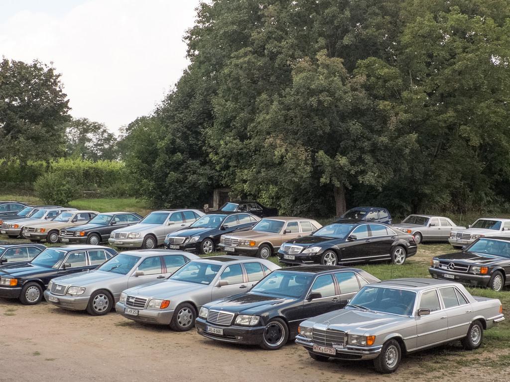 Große Erfolge und Flops der Autogeschichte: Sekt oder Selters
