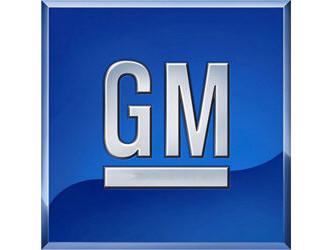 General Motors (GM) hat am meisten unter der weltweiten Rückruf-Welle zu leiden. Der einst größte Autobauer der Welt musste 2014 insgesamt mehr als 30 Millionen Fahrzeuge in die Werkstätten beordern.