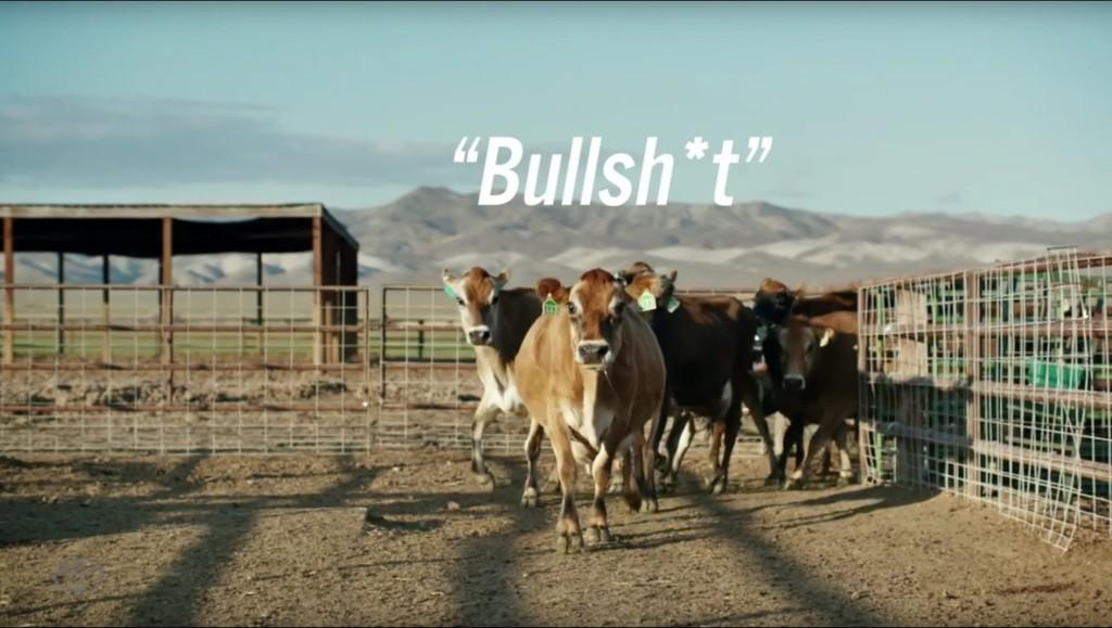 Kein Bullshit: Wasserstoff aus Kuhfladen